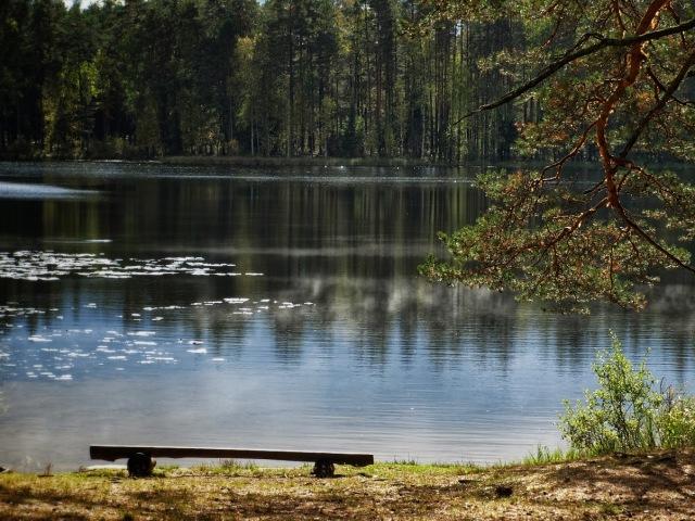 ... luikede järv ...